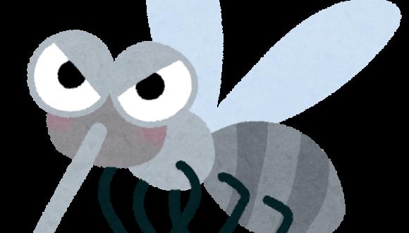 Κουνούπια- Ο επικίνδυνος επισκέπτης του καλοκαιριού